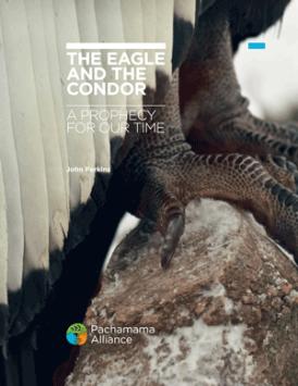The Eagle and the Condor E-guide
