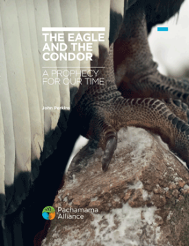 The Eagle and the Condor E-guide